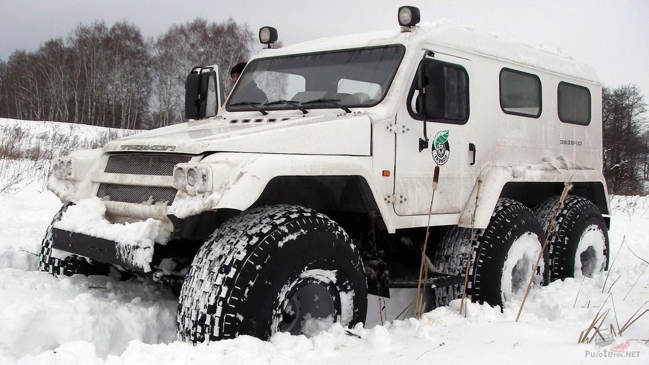 Snegobolotohod-trekol-edet-po-snegu